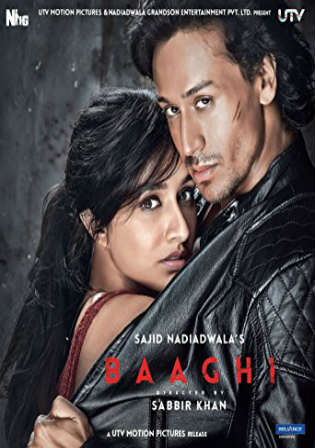 Baaghi 2016 BluRay 400MB Full Hindi Movie Download 480p