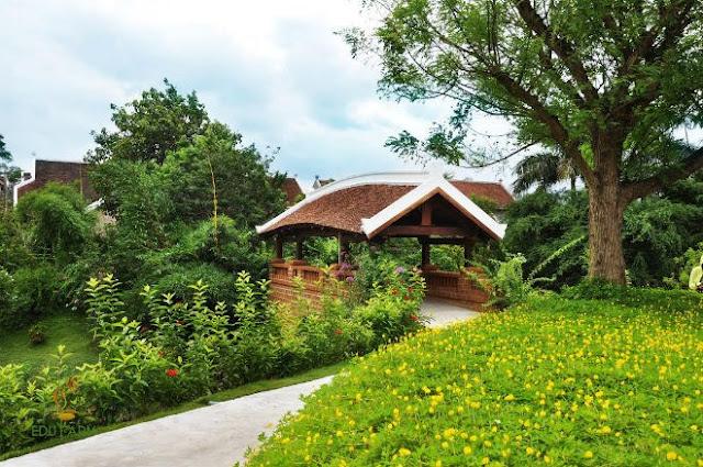 Một góc Trang trại giáo dục EduFarm do TS. Sử Thanh Long đồng sáng lập.