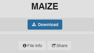 download game maize pc full version gameplay review install gratis free