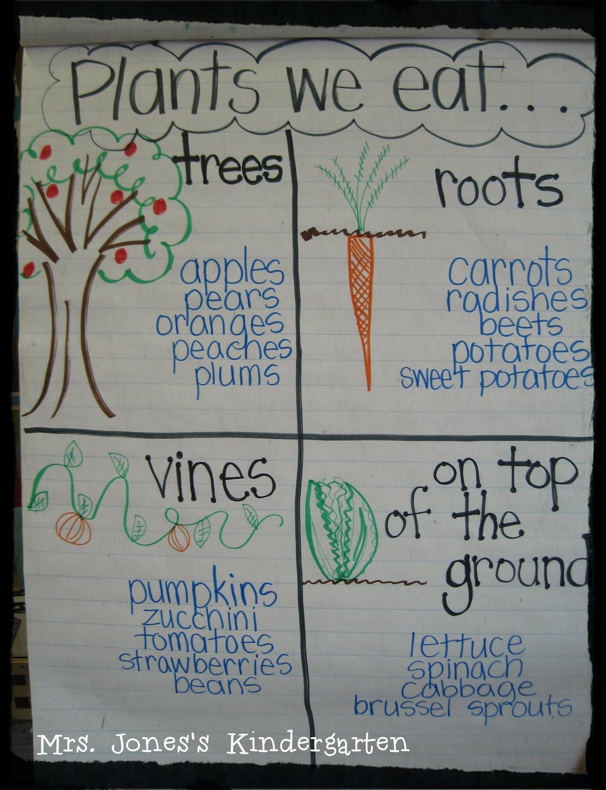 More Plants Writing Celebration Tpt Sale