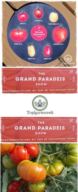 Gartenblog Topfgartenwelt The Grand Paradeis Show: Hansi Renner, der Tomatenkönig von Salzburg, hat bei seiner Tomatenausstellung aus 60 verschiedenen Sorten, die 7 besten ausgewählt. Ein kulinarischer Trip durch die Welt der Paradeiser in Neumarkt am Wallersee.