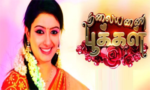 Thalayanai Pookaal 08-08-2016 Zee Tamil Tv Serial 08th August 2016 Episode 53 Youtube Watch Online