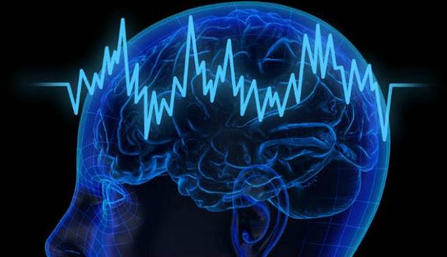 4 Makanan Enak Tapi Berbahaya Untuk kesehatan Otak, Apa Saja?