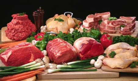 More Than You Ever Wanted to Know About Protein & Gluconeogenesis