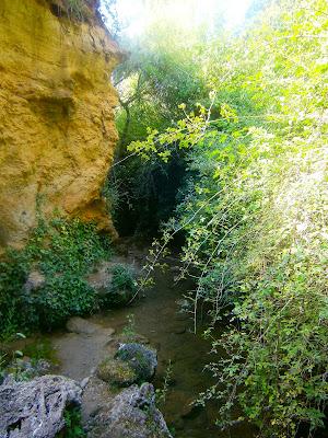 La cascada del Pozo de la Horca, en Cañete. Autor: Miguel Alejandro Castillo Moya