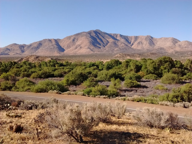 Looking West across San Felipe Creek