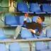 بيان إستنكاري على واقعة تعذيب الجمهور الرجاوي بمراكش