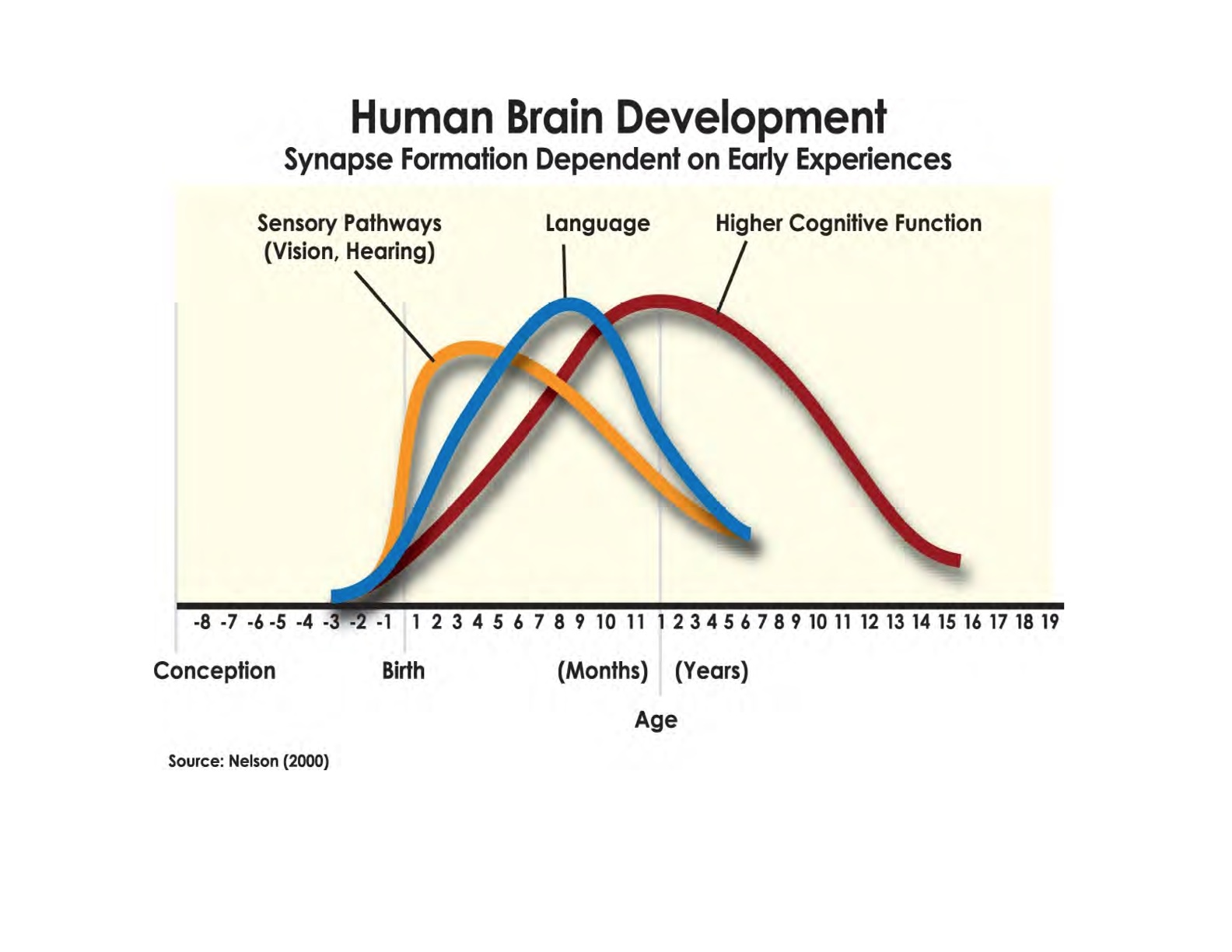 Development of Empathy - An Essential Life Skill!  - https://braininsights.blogspot.com/
