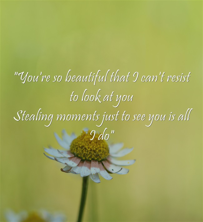 You Are So Beautiful Quotes And Sayings: Youre So Beautiful Quotes. QuotesGram