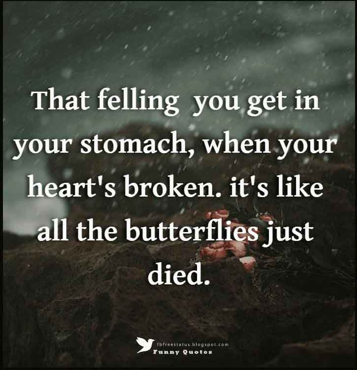 That felling you get in your stomach, when your heart's broken. it's like all the butterflies just died.