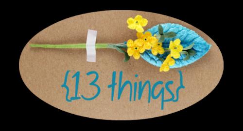 13 things logo