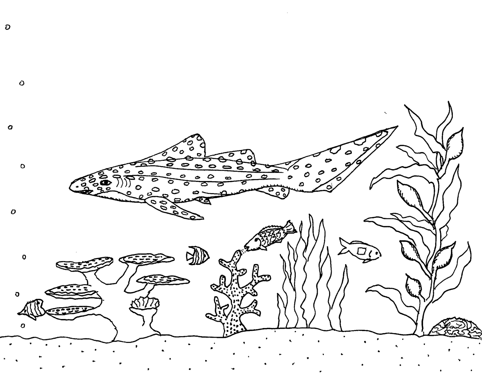 saw shark coloring pages - photo#39