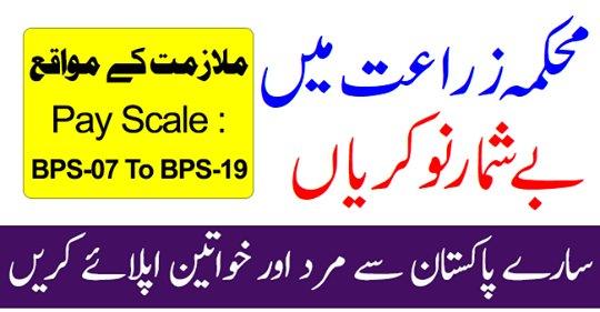 Pakistan Agricultural Jobs, PASSCO Jobs