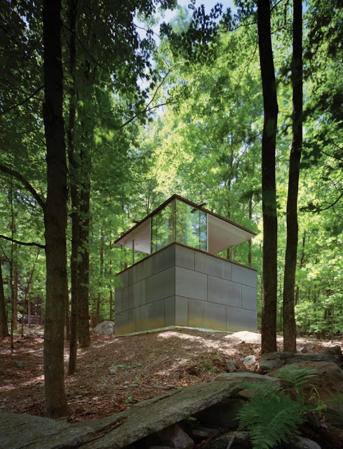 Private study library in the woods
