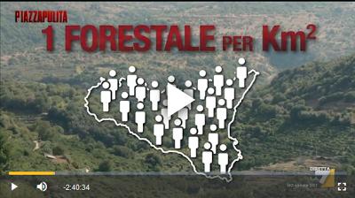 http://www.la7.it/piazzapulita/rivedila7/piazzapulita-i-giustizieri-puntata-26102017-27-10-2017-225471