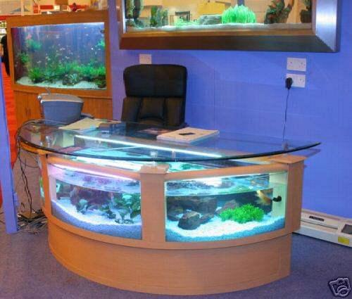 Beautiful Styles Of Fish Aquariums