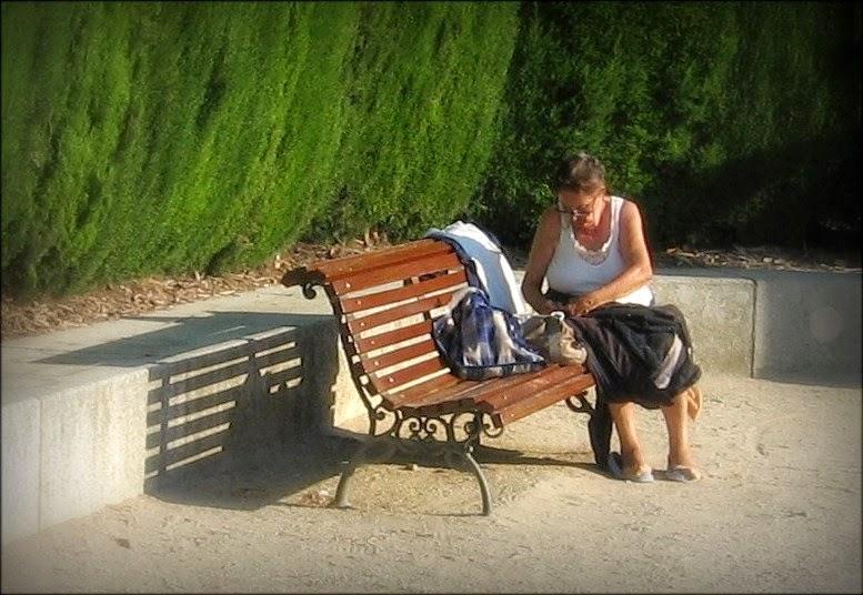Op Een Bankje.Leven In Poezie Op Een Bankje In Het Park