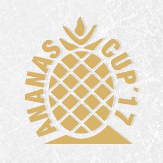 del2, playoffs, goldene ananas, eishockey, dresdner eislöwen, eislöwenfans, hockey, bad lions