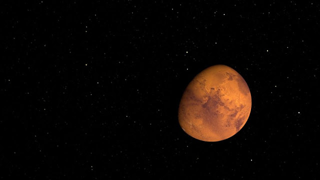 100 passengers to Mars by 2024