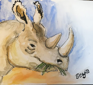 zoo, rhino, Cincinnati zoo, watercolor sketch