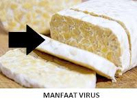 15 Manfaat Virus Bagi Kehidupan Manusia