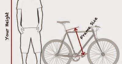 Panduan Membeli Sepeda Terbaik: Nyaman, Murah, dan Ukuran