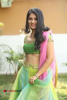 Actress Nikitha Bisht Stills in Lehenga Choli at Pochampally Ikat Art Mela Launch  0217.JPG