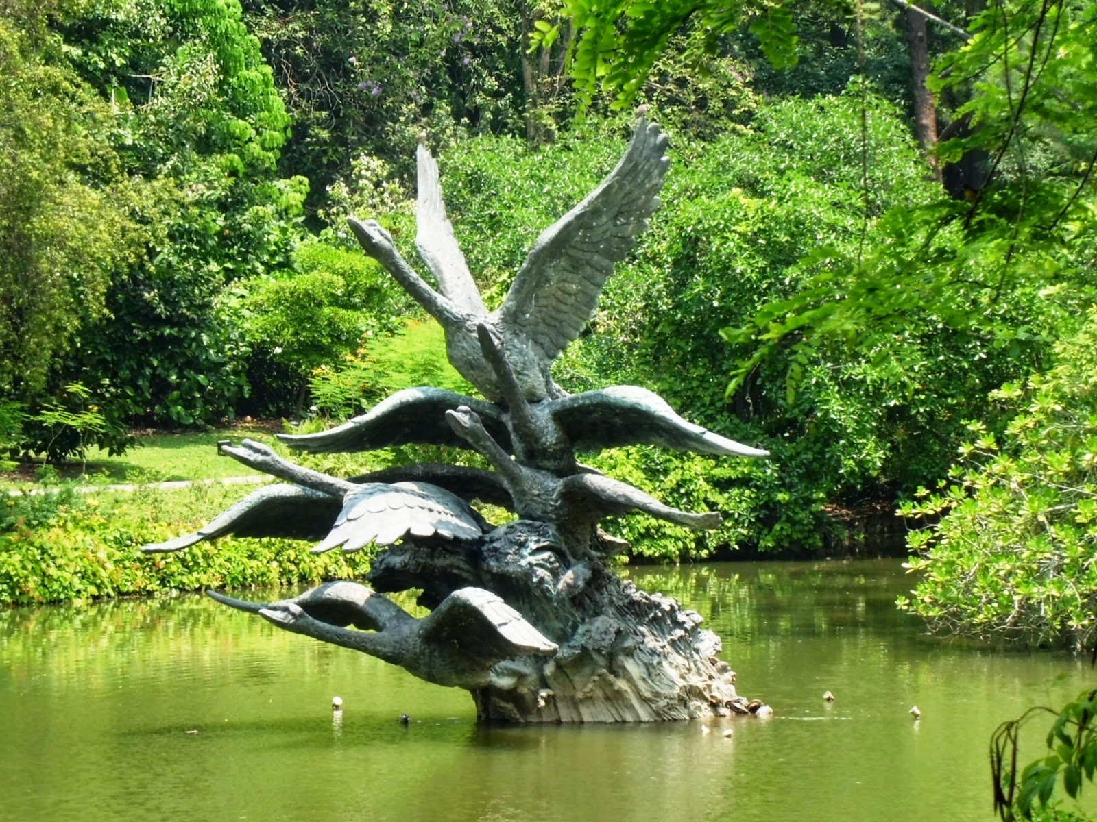 Singapore Botanic Gardens -The Swan Lake