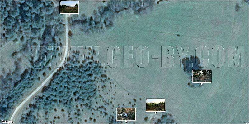 Спутниковая карта Налибокской пущи. У хутора у села Камень