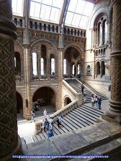 Gran patio central del Museo de Historia Natural de Londres.