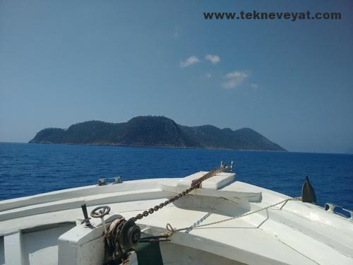 Dana Adası dalış turları
