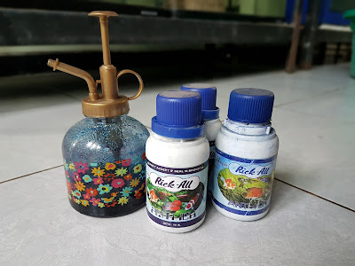 Beri metil biru (Methylene Blue)