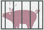 How we´re going to end factory farming