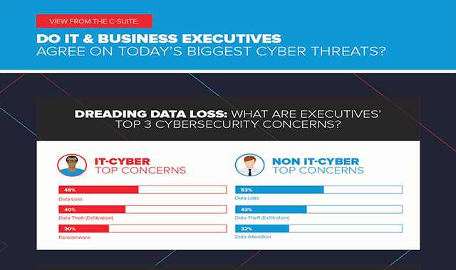 Do Executives and Cybersecurity Pros Agree on Today's Biggest Cyber Threats?