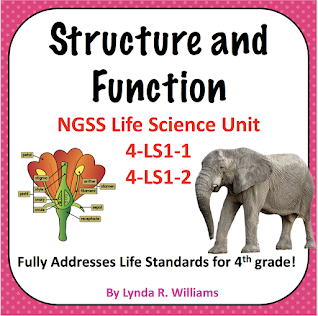 structure and function 4th grade science