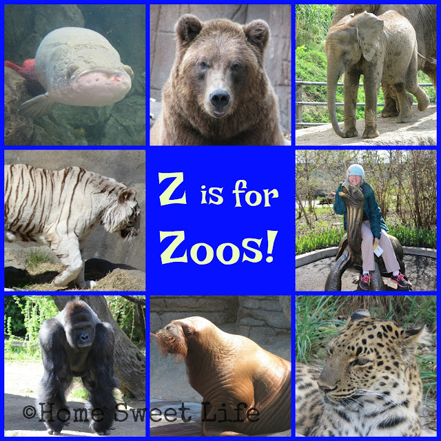 blogging the alphabet, zoos, road trip, field trip fun