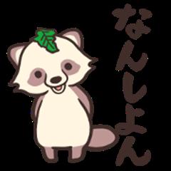 The raccoon dog in TOKUSHIMA
