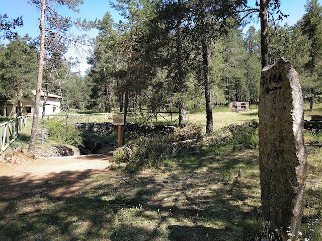 Sima de Alcorón, entrada