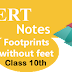 NCERT Notes and Summary for Class 10th Footprints Without Feet English