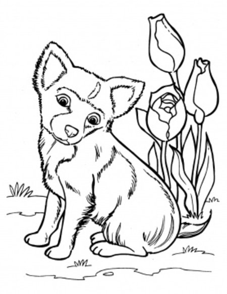 Coloring book pages dog ~ Funny Puppies Coloring Pages for Kids >> Disney Coloring Pages