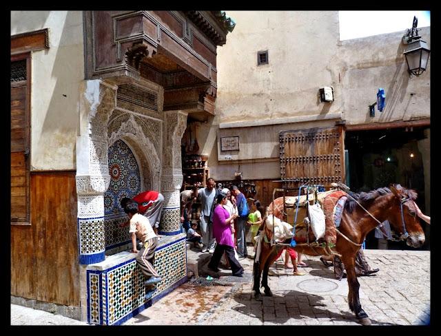 Fuente y burro en Fez