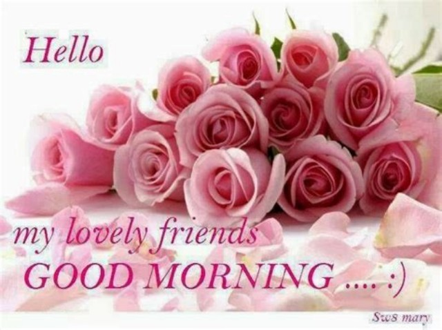 good morning rose images 40 hd rose pictures download