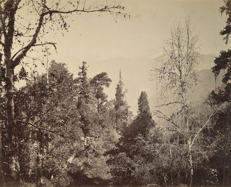 View of the Bunderpunch Peak in Yamunotri - Himalayas 1860's