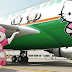 Este avión no sólo es de Hello Kitty por fuera, sino que por dentro es todavía más especial