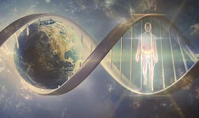 Scienziati-rendere-giovani-cellule-umane