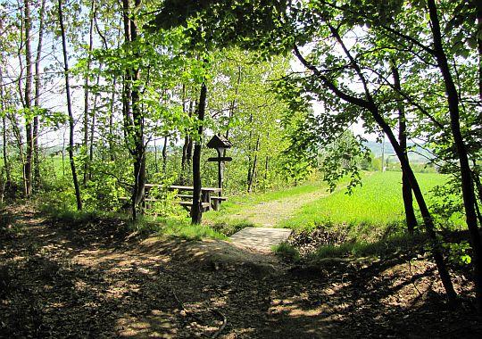 Tu na skraju lasu znów można przysiąść przy ławie.