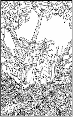 dragon printable adult coloring pages free