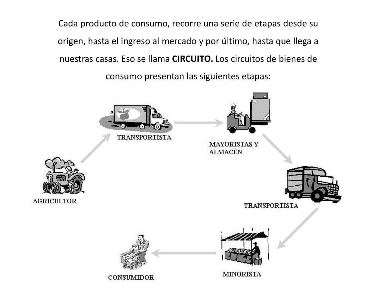 Circuito Productivo : Fotó ciclo productivo del huevo fogalmazás