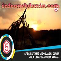 http://www.infoanehdunia.com/2017/05/5-spesies-yang-mampu-bertahan-hidup.html