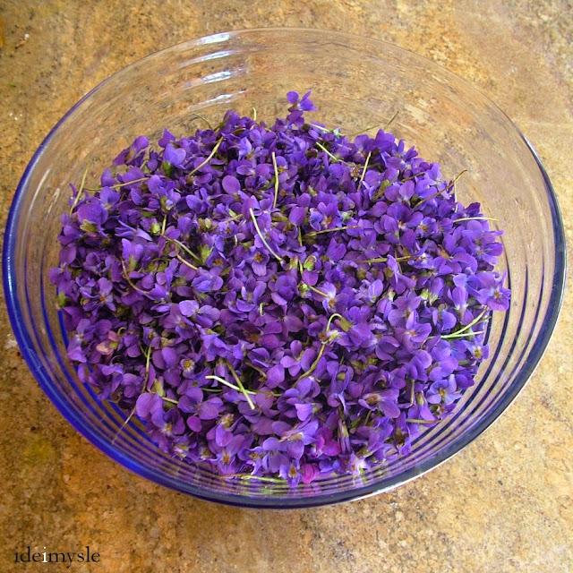 fiołek wonny, jadalne kwiaty fiołka, edible sweet violet, fiołki przepis, viola odorata